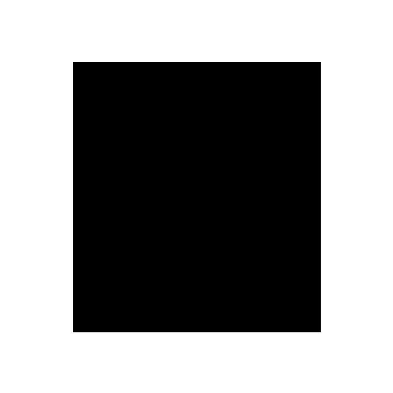 logo-snowbord